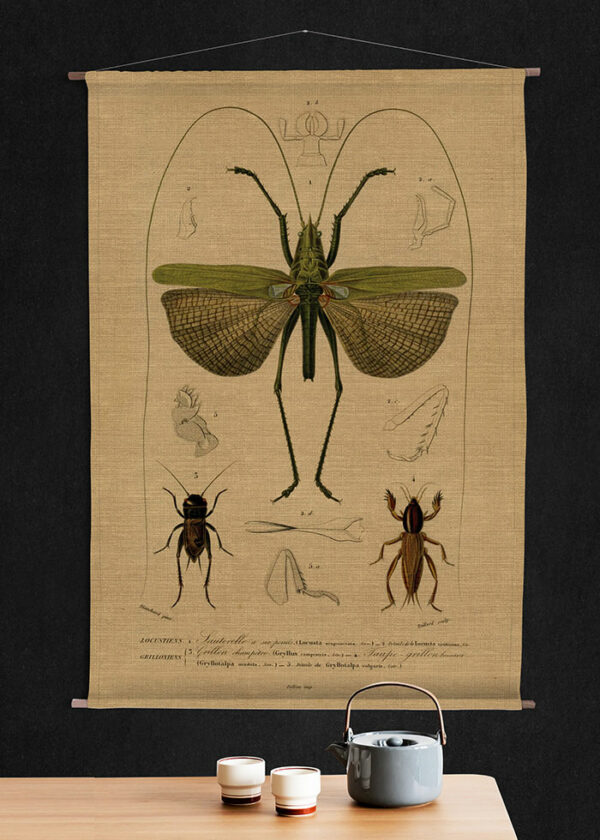 Soil-Prints_0012_Hanging_DragonFly_Kettle