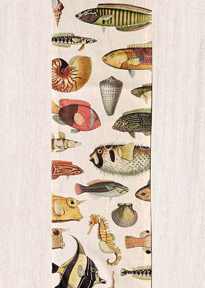 Soil-Prints_0013_Runnner_Full_Fish_White