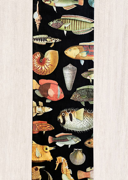 Soil-Prints_0015_Runnner_Full_Fish_Black